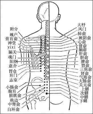 经络不通,要先调膀胱经(附经络图) 艾灸养生 第2张